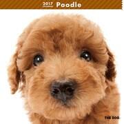 THE DOG カレンダー プードル [2017年カレンダー]