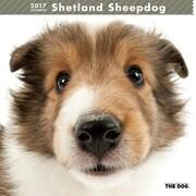 THE DOG カレンダー シェットランドシープドッグ [2017年カレンダー]