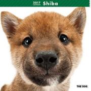 THE DOG カレンダー 柴 [2017年カレンダー]