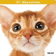 THE CAT カレンダー アビシニアン [2017年カレンダー]