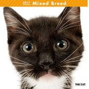 THE CAT カレンダー ミックス [2017年カレンダー]