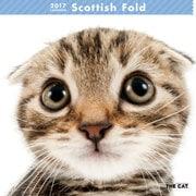 THE CAT カレンダー スコティッシュ・フォールド [2017年カレンダー]