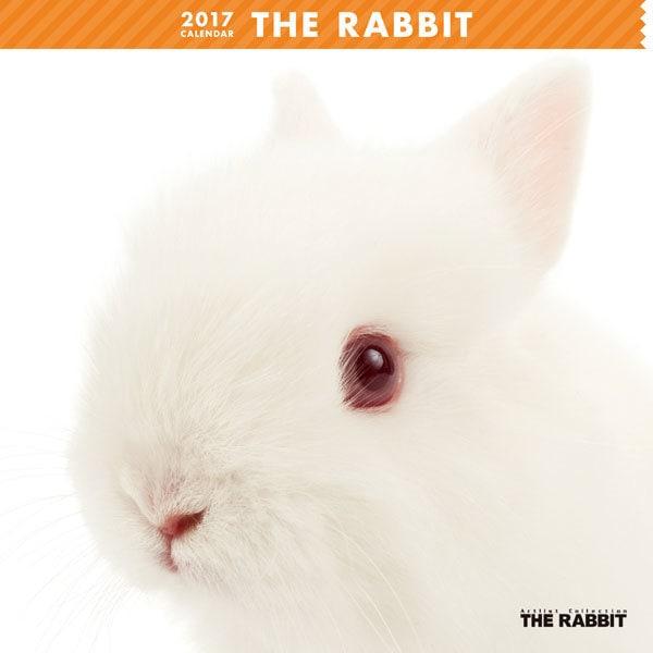 THE RABBIT カレンダー [2017年カレンダー]