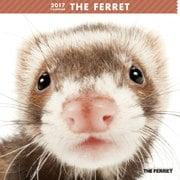 THE FERRET カレンダー [2017年カレンダー]