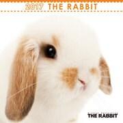 THE RABBIT ミニカレンダー [2017年カレンダー]