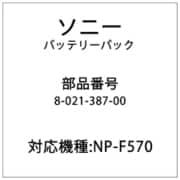 8-021-387-00 [バッテリーパック(F570)]