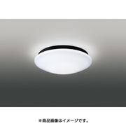 FCG-38883 [屋外用LEDシーリングライト E-CORE(イーコア)用グローブ]