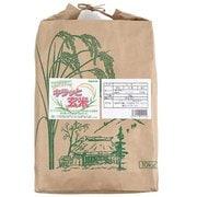 福島県産コシヒカリ キラッと玄米(調製玄米) 10kg 28年産