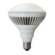 LDR20WPAR38L-TM [LED電球 屋外レフ形 電球色 150W相当]