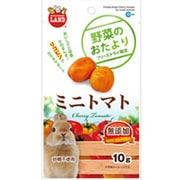 野菜のおたより ミニトマト 10g [小動物用フード・おやつ]