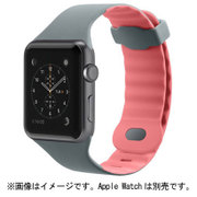 F8W729BTC01 [Sports Band for Apple Watch 38mm用 カーネーション]