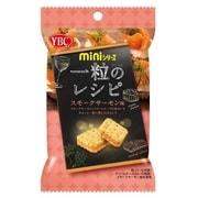 miniシリーズ 一粒のレシピ スモークサーモン味 40g [クラッカーサンド]
