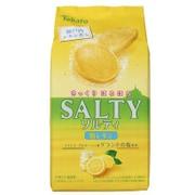 東ハト ソルティ塩レモン 10枚 [クッキー菓子 1袋]