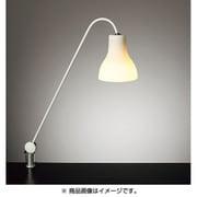 Z-J9000W [Zライト]