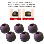 HP-DME01K [ディープマウントイヤーピース Lサイズ 3set入 ブラック]