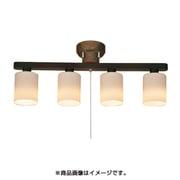 HC-203P-4BKND [シーリングライト 電球別売]