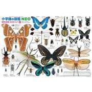 B61-423 [ジグソーパズル 学べるパズル 小学館の図鑑NEO 世界の昆虫大きさくらべ 実物サイズ 300ラージピース]