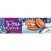 ブルーベリーヨーグルトサンドクッキー 10枚