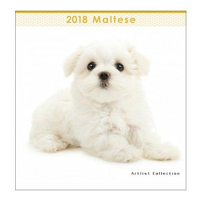 2018年 ミニカレンダー マルチーズ [壁掛けカレンダー]