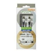 BM-MJHC_M2 [マグネット式 充電専用 二股ケーブル Micro USB×2]