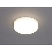 SCL5L-HL [小型LEDシーリングライト 電球色 500lm]