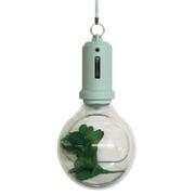PLB-02 [Pocket Light Bulb-Aqua]