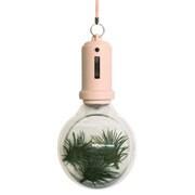PLB-03 [Pocket Light Bulb-Cherry]