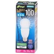 LDT13D-G [LED電球T形 E26 100形 昼光色]