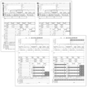 PA1133F100H29 PA1133F 源泉徴収票 H29(100名入)