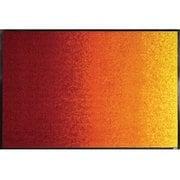 AB00279 [玄関マット Red Rainbow 50×75 cm]