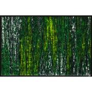AB00325 [玄関マット Scratchy green 50×75 cm]