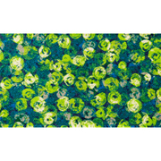 AB00365 [玄関マット Punilla green 70×120 cm]