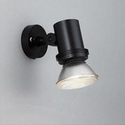 AN-2958 [屋外スポットライト ランプ別売り]