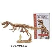 スケルトン・キット ティラノサウルス