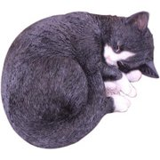 12692 [眠り猫 八割れ]