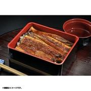 鹿児島産 炭火焼きウナギ「五匠鰻」 蒲焼き 100~120g×2尾
