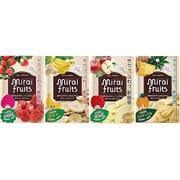 ミライフルーツ イチゴ・リンゴ・バナナ・パイナップル 4袋セット [ドライフルーツ]