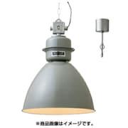 LT-1864GY [Normanton 電球別売]