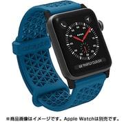 CT-SBAW1738-BS [Apple Watch 38mm シリーズ 1/2/3用 スポーツバンド ブルーリッジサンセット]