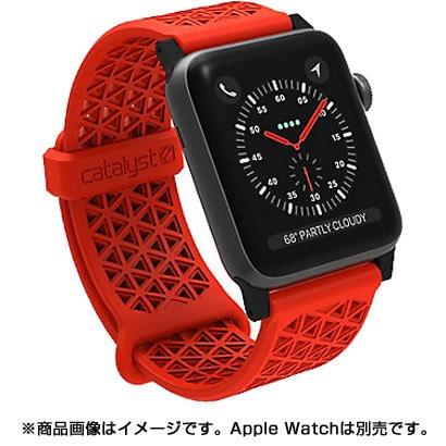 CT-SBAW1742-SS [Apple Watch 42mm シリーズ 1/2/3用 スポーツバンド サンセット]