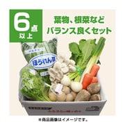 新潟 旬の野菜セット Sサイズ