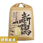 コシヒカリ 特別栽培米 5kg 30年産