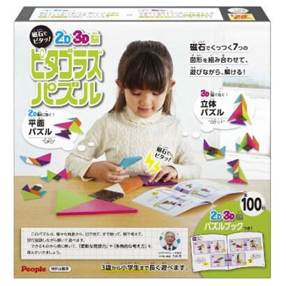 PGS-123 2D 3D脳 ピタゴラスパズル [知育玩具 3歳以上]