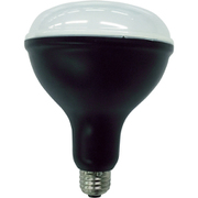 LDR27D-H-E39 [LED電球 投光器用交換電球 3000lm 口金E39]
