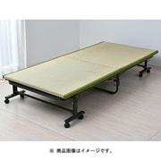 TOB-1S(GR) [折り畳みベッド]