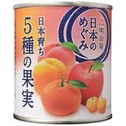 日本のめぐみ 日本育ち 5種の果実 215g [缶詰]