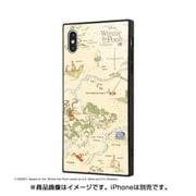 IQ-DP19K1B/PO002 [iPhone XS Max 耐衝撃ガラスケース KAKU ディズニー くまのプーさん_33]