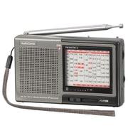 RAD-H310N [AudioComm たんぱラジオ 株・競馬]