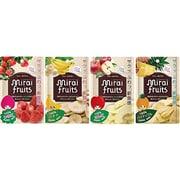 ミライフルーツ いちご・りんご・バナナ・パイナップル 4袋セット [乾燥果実]