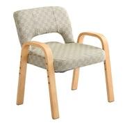 TWZ-GE グリーン [肘掛け高座椅子 6段階のリクライニング機能付き 高さ調節3段階]